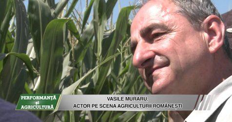 AGRICOST - Performanta si Agricultura - 11 sept 2015 - Vasile Muraru in Insula Mare a Brailei (II) - AGRICOST – Performanta si Agricultura – 11 sept 2015 – Vasile Muraru in Insula Mare a Brailei (II)