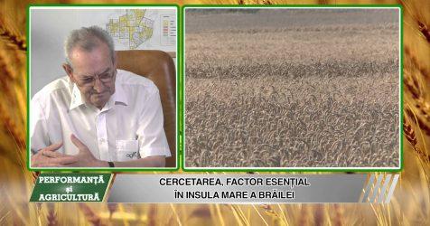AGRICOST – Performanta si Agricultura – 21 AUGUST 2015 – Furnicar în plină vacanță ( II)