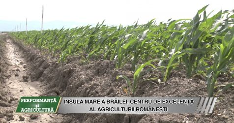 AGRICOST - Performanta si Agricultura - 19 IUNIE 2015 - BT Video Productie VIDEO - AGRICOST – Performanta si Agricultura – 19 IUNIE 2015 – BT Video Productie VIDEO