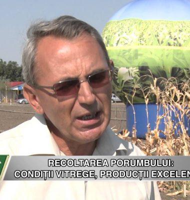 Performanta Agricultura Rezultate Recoltare - Performanta si Agricultura Rezultate Recoltare porumb la Hibrizii Syngenta
