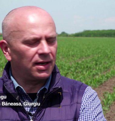 - Povestea Mea cu Syngenta Eugen Lungu – BT Video Productie VIDEO