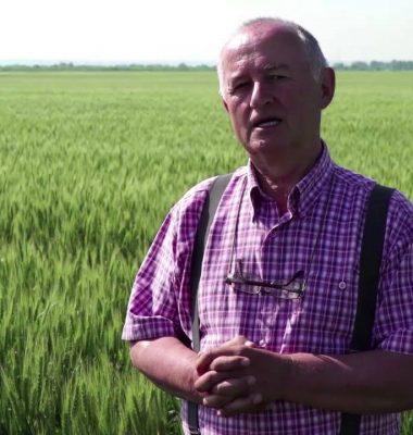 - Povestea Mea cu Syngenta Gheorghe Cireap – BT Video Productie VIDEO