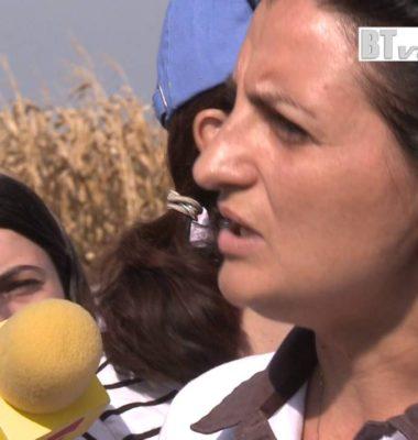- Ziua Porumbului Orezu Ialomita ( productie video btvideo.ro)