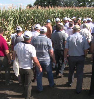 Eveniment Syngenta, agricultura  Republica Moldova, agricultura Marandeni, agricultura Raionul Falesti - Eveniment Syngenta Republica Moldova, Marandeni, Raionul Falesti